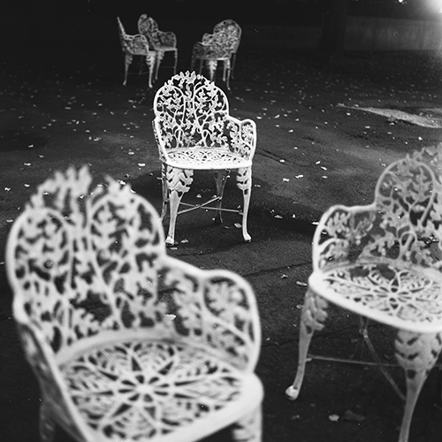 autumn leaves and chairs, liberty island, new york
